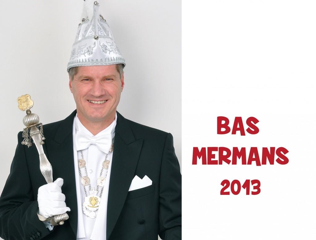 Bas Mermans: 2013