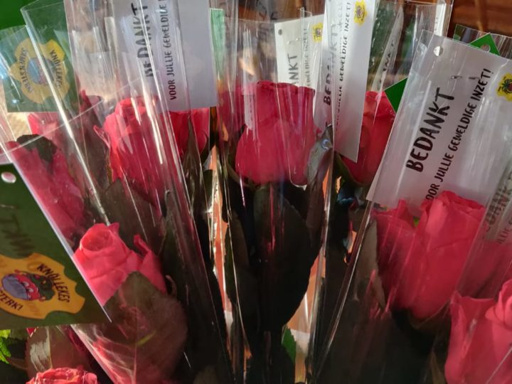 240 rozen voor St. Petrus